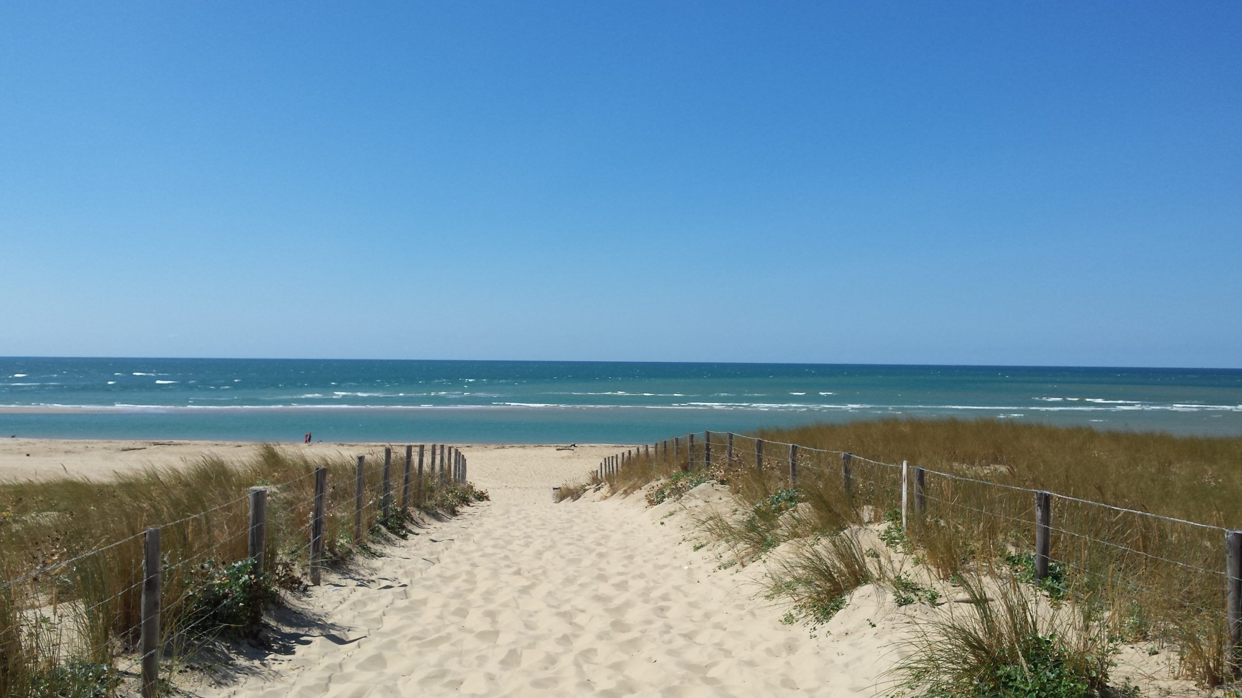 mer océan plage soleil surf kite paddle jetski surveillance