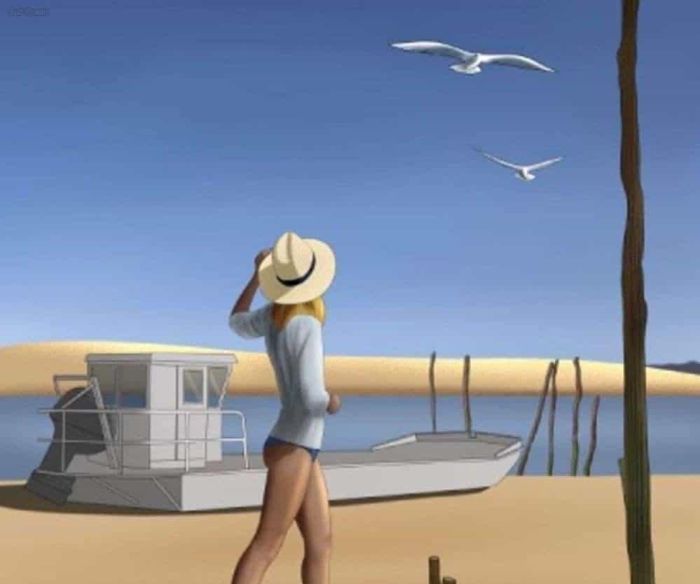 ile-aux-oiseaux-vacances-bassin-location